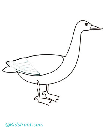 Goose Coloring Pages For Kids