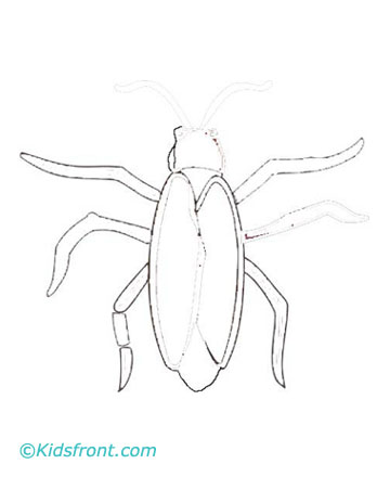 Cockroach Coloring Pages For Kids