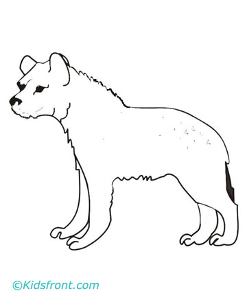 Hyena Coloring Pages Printable