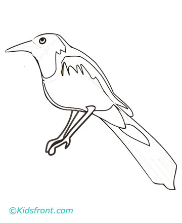 Magpie Coloring Pages Printable